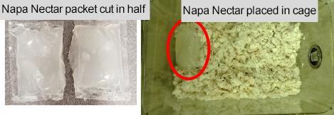 Napa Nectar