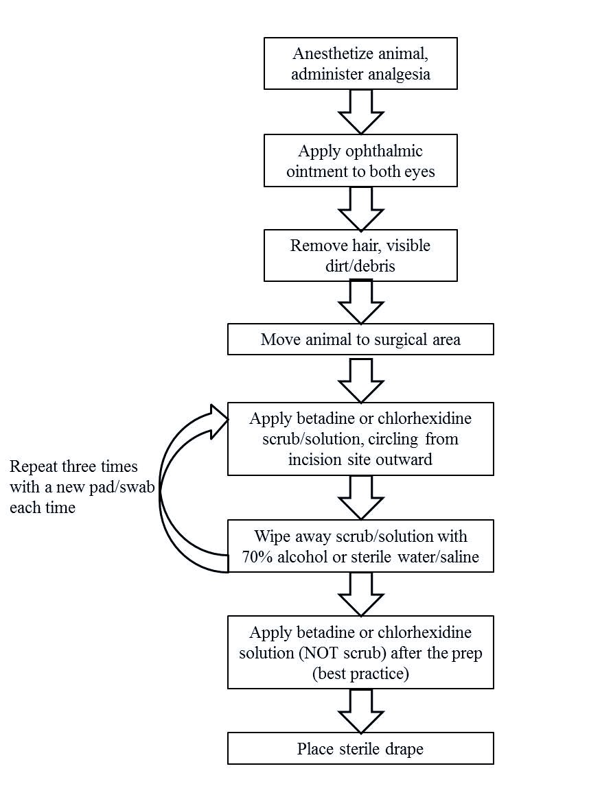 Flow chart of Optimal Surgical Scrub Prep Procedure