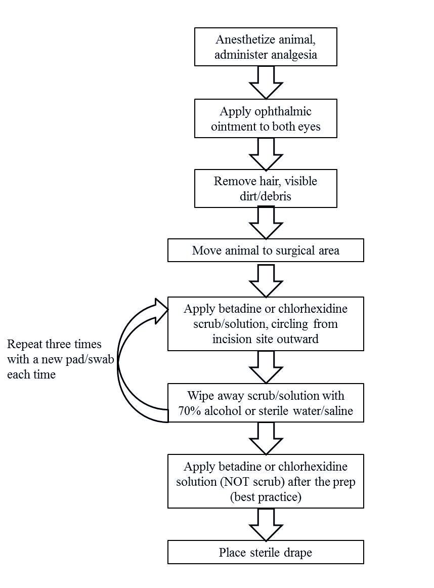 Flow chart of Optimal Surgical Scrub Prep Procedure